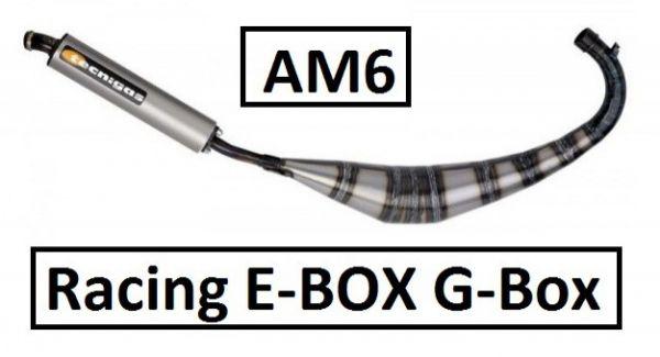 Auspuff Tecnigas E-BOX (G-Box) Racing Aprilia MBK Rieju Yamaha 50 AM6