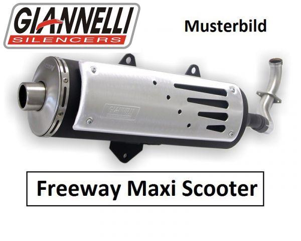 Sportauspuff Giannelli Freeway PIAGGIO X9 250 Evolution M23 04-07 4T